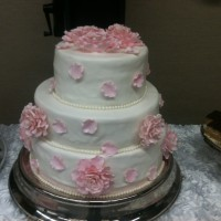 Cake 97
