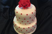 Cake 106