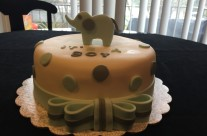 Cake 120