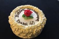 Cake 127